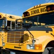 North Andover school buses